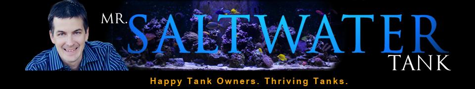 Mr. Saltwater Tank
