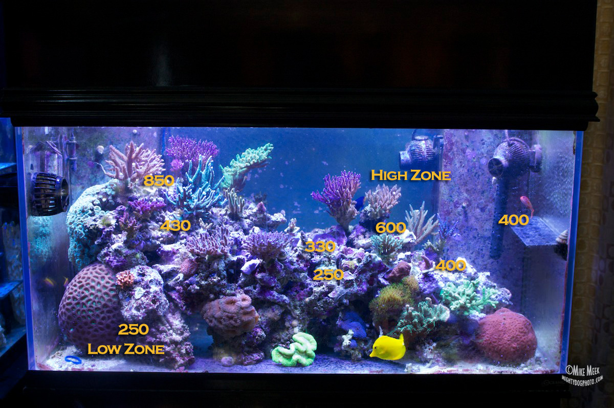 ... tanks. u2014u2014u2014u2014u2014u2014u2014u2014u2014 : led reef tank lighting - azcodes.com