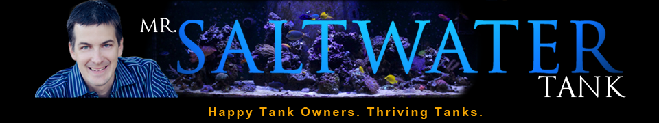 Mr-SaltWaterTank-header-FINAL.png