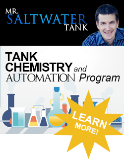 Mark widget Chemistry Learn More