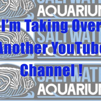 I'm Taking Over SaltwaterAquarium.com's YouTube Channel